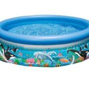 Best Swimming Pool for Garden Intex Ocean Reef 54902GS Easy Set Pool with Pump
