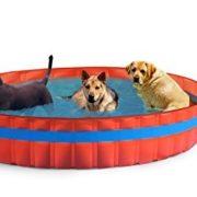 Best Swimming Pool for Garden New Plast 3100K Pool For Dogs, Orange