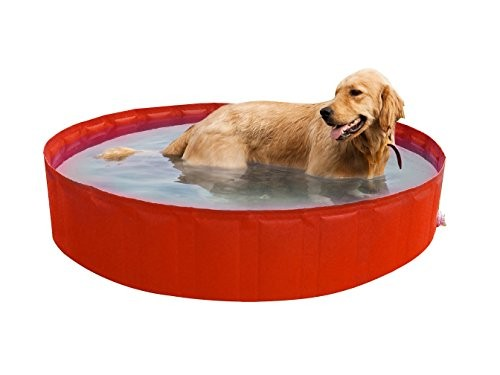 Best Swimming Pool for Garden New Plast 0102My Dog Pool Pool For Dogs, Orange